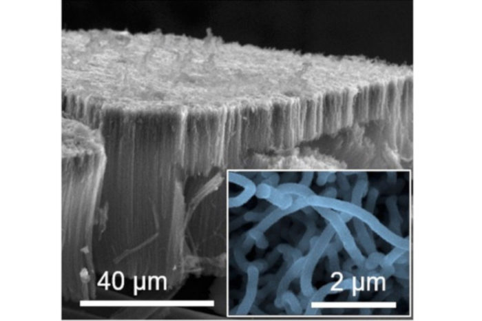 Titanium disulfide supercapacitor could be a competitive alternative to lithium-ion batteries