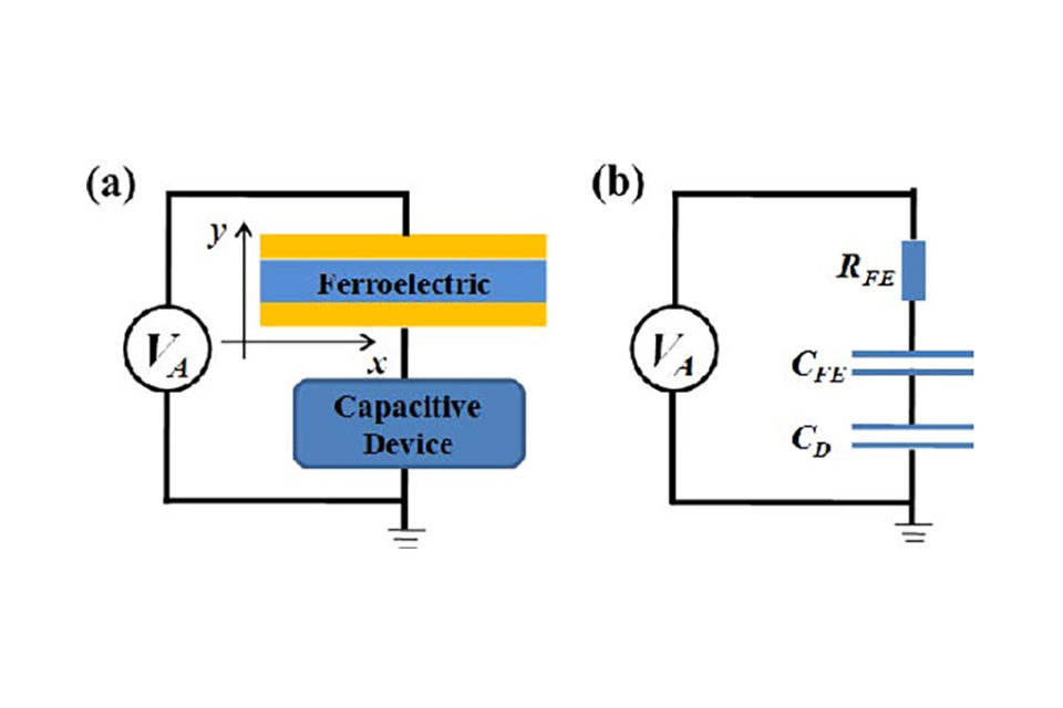 Spatially resolved steady-state negative capacitance in ferroelectric TiO3 materials