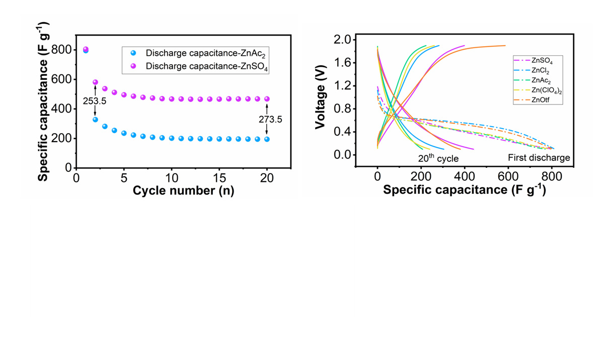 Zinc-ion Hybrid Capacitors with Ideal Anions in the Electrolyte Show Low Self-Discharge and Extra-Long Performance